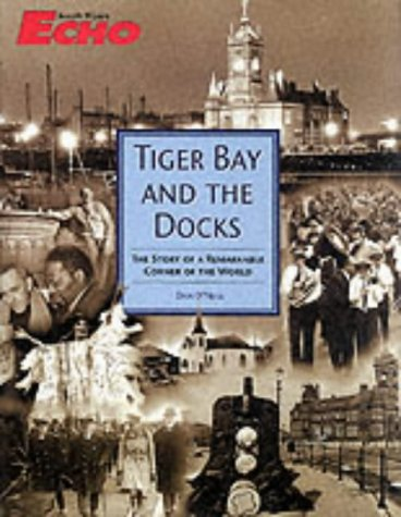 Tiger Bay and the Docks The Story of a Remarkable Corner of the World