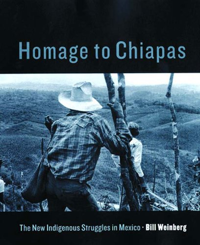9781859847190: Homage to Chiapas: The New Indigenous Struggles in Mexico