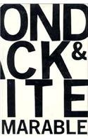 9781859849248: Beyond Black and White: Rethinking Race in American Politics and Society (Radical Thinkers)
