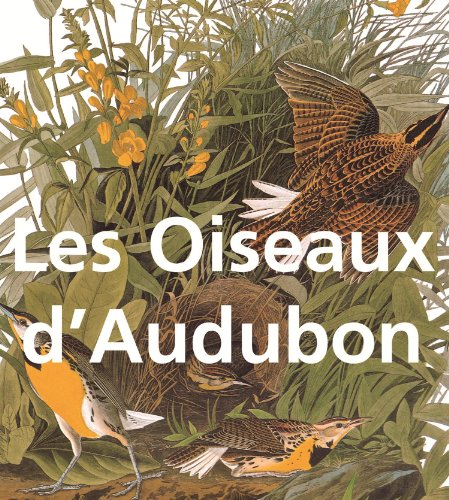 Les Oiseaux d'Audubon