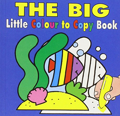 9781859972939: The Big Little Colour to Copy Book