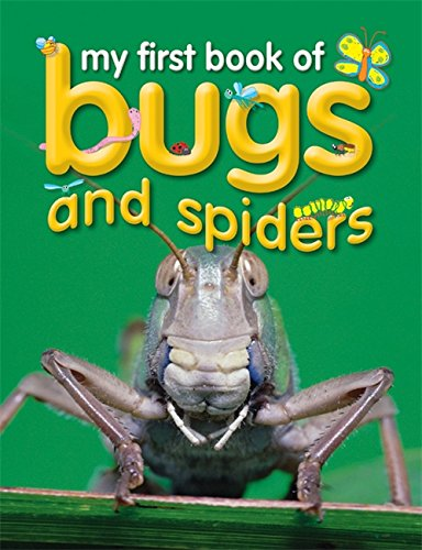 9781860078637: My First Book of Bugs & Spiders