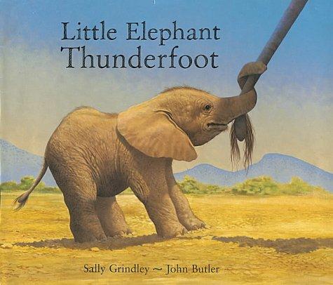 9781860396625: Little Elephant Thunderfoot