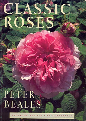 9781860463037: Classic Roses