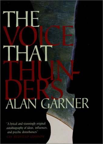 9781860464683: The Voice That Thunders: Essays and Lectures