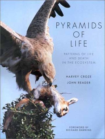 9781860466137: Title: PYRAMIDS OF LIFE