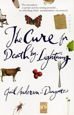 9781860490361: The Cure For Death By Lightning