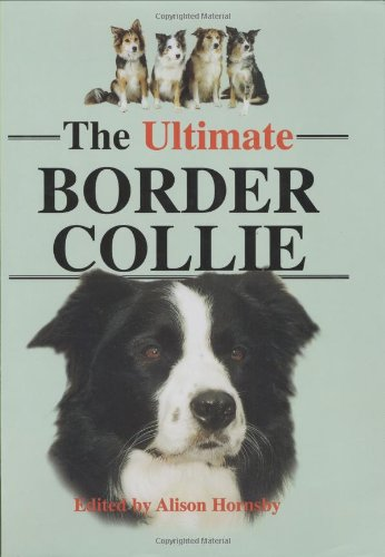 9781860540882: The Ultimate Border Collie
