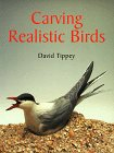 9781861080103: Carving Realistic Birds