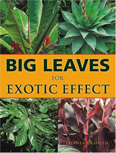 9781861082626: Big Leaves for Exotic Effect