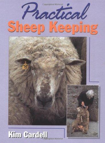 9781861261632: Practical Sheep Keeping