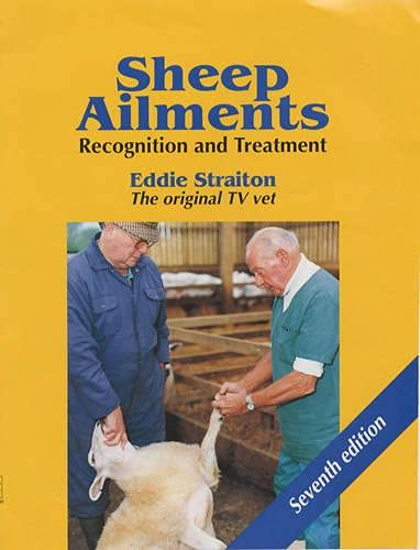 9781861263971: Sheep Ailments: Recognition and Treatment