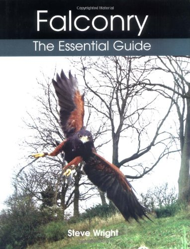 Falconry: The Essential Guide: Steve Wright