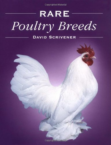 9781861268891: Rare Poultry Breeds