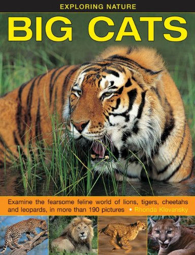 Exploring Nature: Big Cats: Examine the Fearsome Feline World of Lions, Tigers, Cheetahs and ...