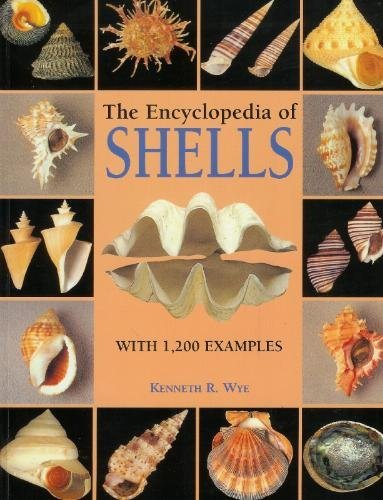 9781861609526: The Encyclopedia of Shells
