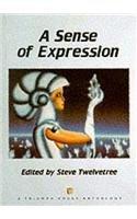 Sense of Expression: Twelvetree, Steve