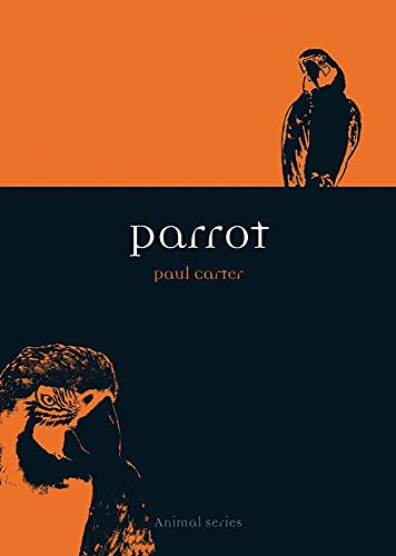 Parrot (Animal) (1861892373) by Paul Carter
