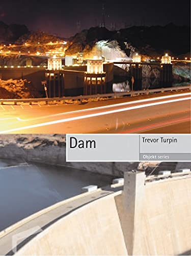 9781861893284: Dam (Objekt)