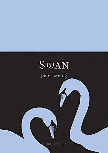 9781861893499: Swan: 0 (Animal Series)