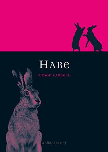 9781861894311: Hare (Animal Series)