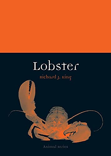 9781861897954: Lobster (Animal) (Animal Series)