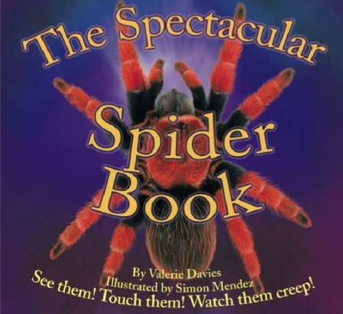 9781861991423: The Spectacular Spider Book (Beautiful Bugs) (Beautiful Bugs)