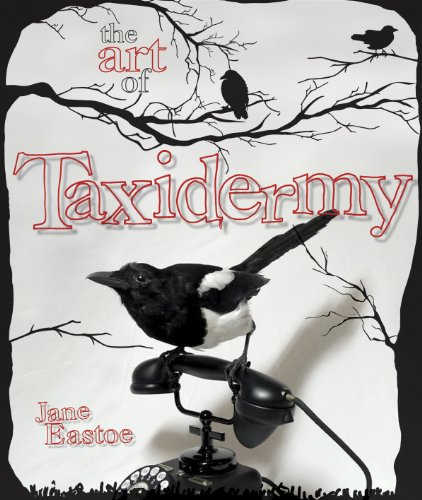 The Art of Taxidermy: Eastoe, Jane