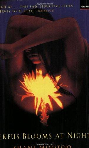9781862072497: Cereus Blooms at Night