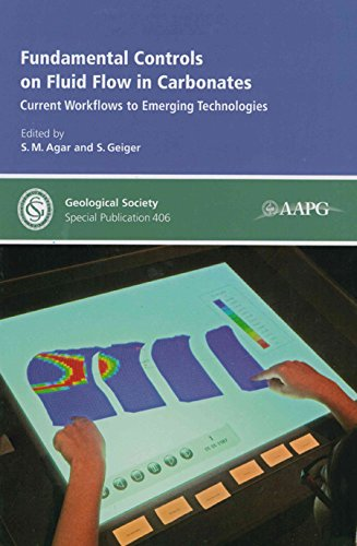 9781862396593: Fundamental Controls on Fluid Flow in Carbonates: Current Workflows to Emerging Technologies (Geological Society Special Publications)
