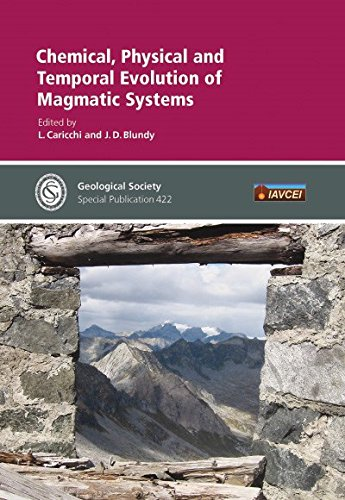 9781862397323: Chemical, Physical and Temporal Evolution of Magmatic Systems