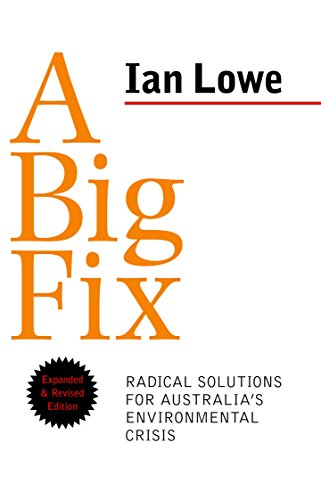 A Big Fix (Paperback): Ian Lowe