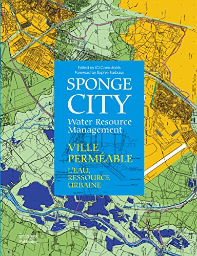 9781864706581: Sponge City: Water Resource Management (English and French Edition)