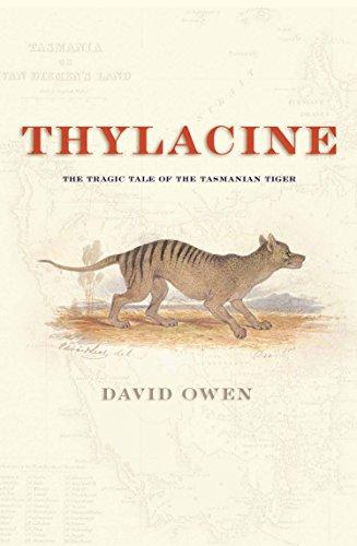 9781865087580: Thylacine: The Tragic Tale of the Tasmanian Tiger