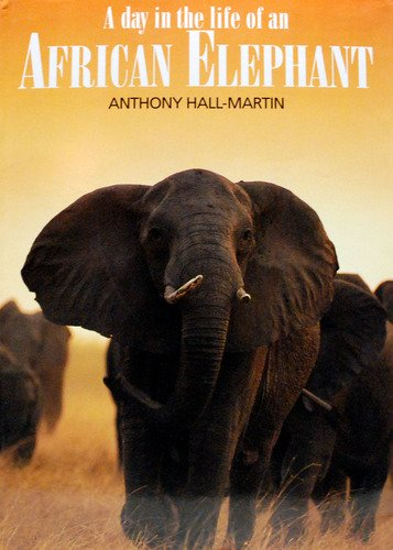 9781868124756: A day in the life of an African elephant