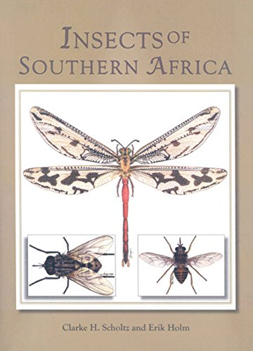 9781869192433: Insects of Southern Africa