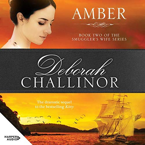 9781869506322: Amber