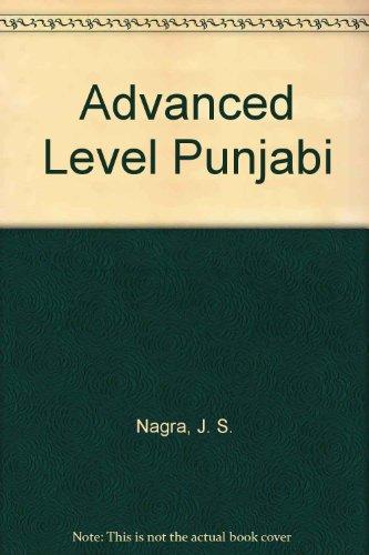 9781870383028: Advanced Level Punjabi