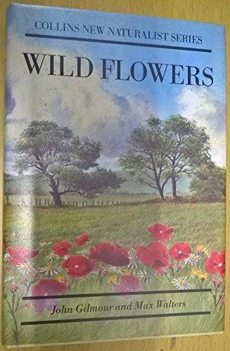 9781870630788: Wild Flowers