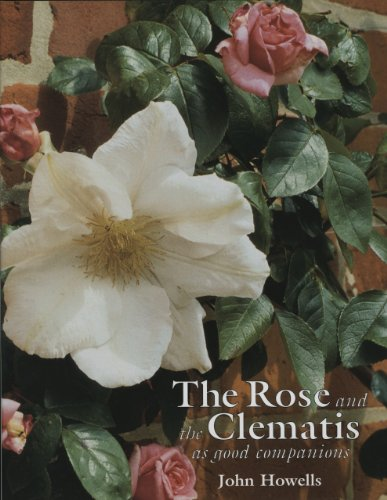 9781870673198: The Rose and the Clematis as Good Companions