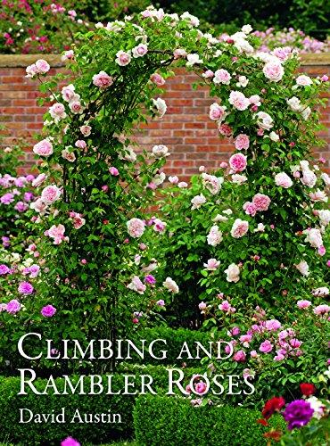 9781870673655: Austin, D: Climbing and Rambler Roses