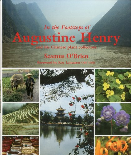 9781870673730: In the Footsteps of Augustine Henry and His Chinese Plant Collectors /Anglais