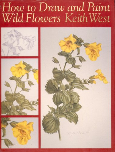 9781871569568: How to Draw and Paint Wild Flowers: Step by Step (Draw Books)