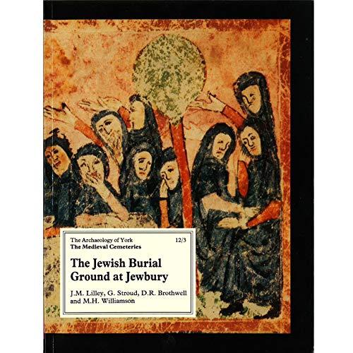 9781872414508: The Jewish Burial Ground at Jewbury (Vol 12)