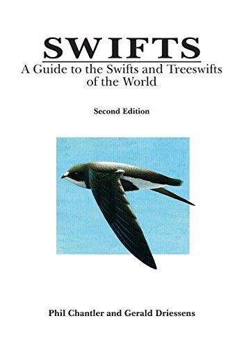 Swifts (Birds of the World): Chantler, Phil