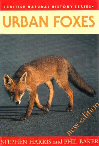 9781873580516: Urban Foxes (British Natural History Series)