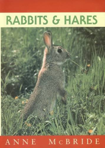 9781873580639: Rabbits and Hares