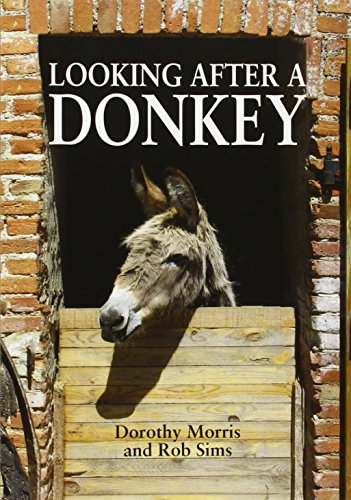9781873580929: Looking After a Donkey