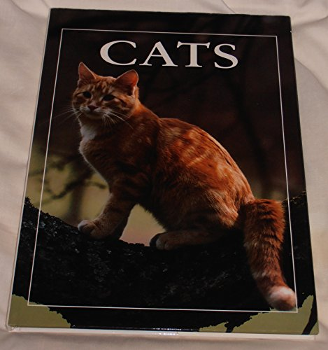 9781873762233: The World of Cats (The world of...)