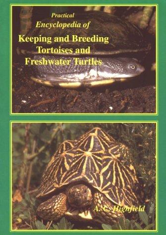 Practical Encyclopedia of Keeping and Breeding Tortoises: Highfield, A.C.